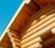 Защищаем деревянный дом от гнили и грибка
