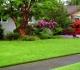 Идеальный газон на вашем приусадебном участке